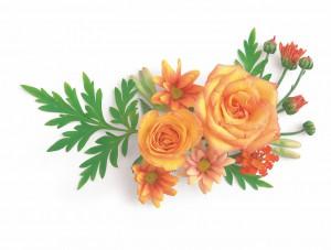 flower 79